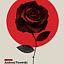 Historie Różankowe-Kadry Pamięci