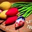 Bawełniane tulipany na pierwszy Dzień Wiosny-warsztaty szycia