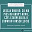 Lekcja online: co ma pies do grupy krwi, czyli słów kilka o Ludwiku Hirszfeldzie - webinar