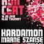 Koncert Kardamon i Marne Szanse w Tygmoncie