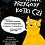 Magiczne Przygody Kotki Czi