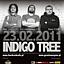 Granie Na Żywo – Indigo Tree