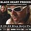The Black Heart Procession usa