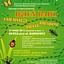 Tajemniczy świat owadów - Dzień bajki na Baśniowej