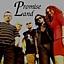Zapraszamy na koncert zespołów Promise Land & Butterfly Machine!