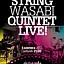 Koncert String Wasabi