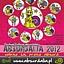 23.11.12 Festiwal Absurdalia - Akurat, Absynth