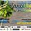 Dancehall !!! w MIEŚCIE