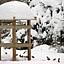 Zimowe spotkania ornitologiczne