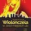 Wiolonczela w_śród+miejskich ulic /Agata Kurzyk, wiolonczela/