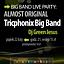 BIG BAND LIVE PARTY: Tricphonix Big Band: Almost Original