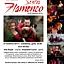 "Festiwal ""Sentir Flamenco"" 2013 - Koncert ""Viva Sevilla"""