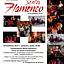 """Festiwal """"Sentir Flamenco"""" 2013 - Festiwalowa Fiesta Flamenco"""