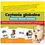 Nauka czytania dla małych dzieci metodą globalną (1-6 r.ż.). Bezpłatne spotkanie. Zapraszamy rodziców i dzieci :-)