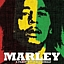 Marley - projekcja filmu