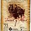 Koncert flamenco Tierra y alma