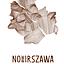 """Koncert projektu """"Nowa Warszawa"""" w Noc Muzeów"""