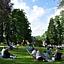Piknik w pałacowym parku