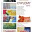 DYPLOMY 2013