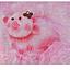 pink lollypop