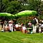Pod parasolkami – przyrodnicze warsztaty dla dzieci w ogrodach wilanowskich