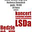 LSDa czyli…  Będzie po czesku… czyli…  LSDa