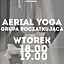 AERIAL YOGA Z LEIRĄ WE FREE ART FUSION