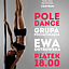 POLE DANCE Z EWĄ OSTROWSKĄ WE FREE ART FUSION