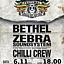 """6.11 """"BIG UP! FEST"""" w Poznaniu (Zebra SS, Bethel, Chilli Crew) - Blue Note"""