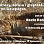 Albatrosy, żółwie i głuptaki… rejs po Galapagos