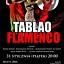 Koncert Flamenco w klubokawiarni Resort