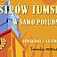 Ostrów Tumski w samo południe: TWIERDZA