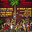 Reggae pod palmą