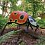 Stań oko w oko z gigantycznym szerszeniem – świat owadów na wyciągnięcie ręki w Porcie Łódź