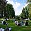 """""""Piknik w pałacowym parku"""""""