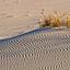 W ulotnym świecie piasków