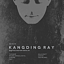 Kangding Ray  live [Raster-Noton, Stroboscopic Artefacts]