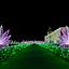 Królewski Ogród Światła – nowe ekspozycje