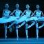 """""""Jezioro łabędzie"""" - retransmisja baletu z Teatru Bolszoj w Moskwie"""