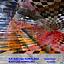 """""""Zmysły Sztuki"""" z Katarzyną Kowalską i Bartoszem Kowalskim w Muzeum Pałacu Króla Jana III w Wilanowie"""