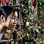 Filmowe Tết – Wietnamski Nowy Rok – 21 lutego w Kinie Muranów
