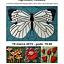 WERNISAŻ wystawy ceramicznych obrazów Agnieszki Kubasik.