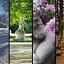 Wiosenna odsłona III Konkursu Fotograficznego w Łazienkach Królewskich