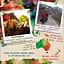 TASHI DELLO – BĄDŹ ZDRÓW! - opowieści tybetańskie dla dzieci