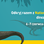 """Piknik """"Zaginiony Świat Dinozaurów"""" z National Geographic Channel"""
