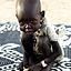 NOWY SUDAN Akcja przeciw głodowi