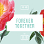 Forever Together! // Mia Twin & Kasp