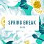 Spring Break party! // Dj Romi