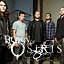 Born of Osiris | Veil of Maya | Volumes | Black Crown Initiate