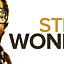 "Wonder Family feat. Kasia Mirowska: ""The Best of STEVIE WONDER"" /koncert/"